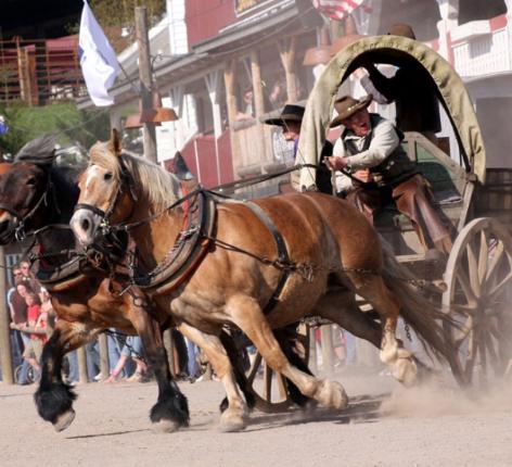 Pferde mit Kutsche